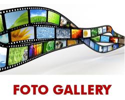 Foto Gallery dello SPI CGIL Piemonte